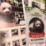 上野赤ちゃんパンダ シャンシャン フレーム切手増刷分が郵便局で販売開始